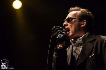 The Damned 2014