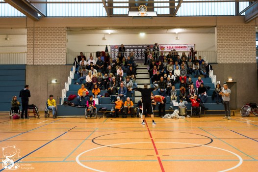 RBC Köln 99ers I - Rollers Zwickau Foto: Steffie Wunderl