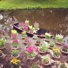 Tulips Amsterdam - Wundertute