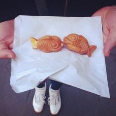 gold fish londres - wundertute