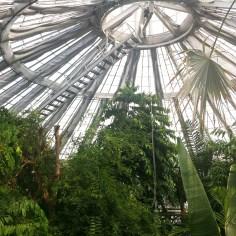 Jardin botanique Copenhague - Wundertute