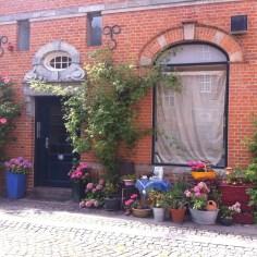 flowers Copenhague - Wundertute