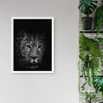 Leopard Kunstdruck Poster Wandbild