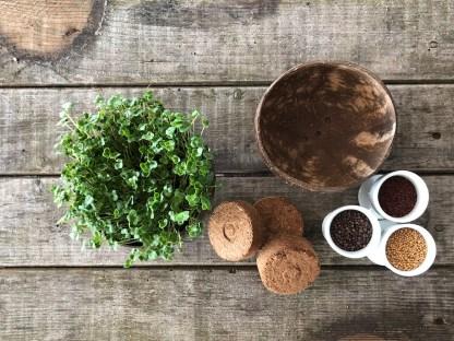 Grow-Grow Nut Starterset