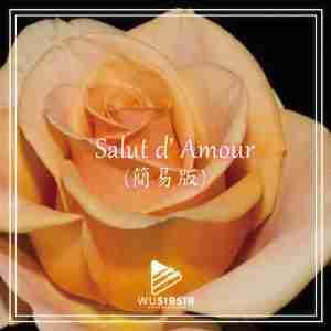 Salut d amour 簡易版