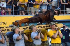 The Mountaineer does push-ups after another WVU touchdown.