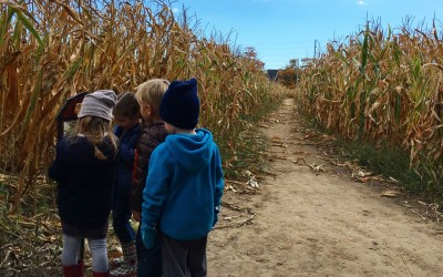 10 WAYS TO GET OUTSIDE THIS FALL IN TORONTO