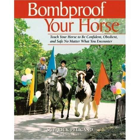 """""""BOMBPROOF YOUR HORSE:"""" Easily one of the strangest titles Amazon has to offer. (View on Amazon.) / SL"""