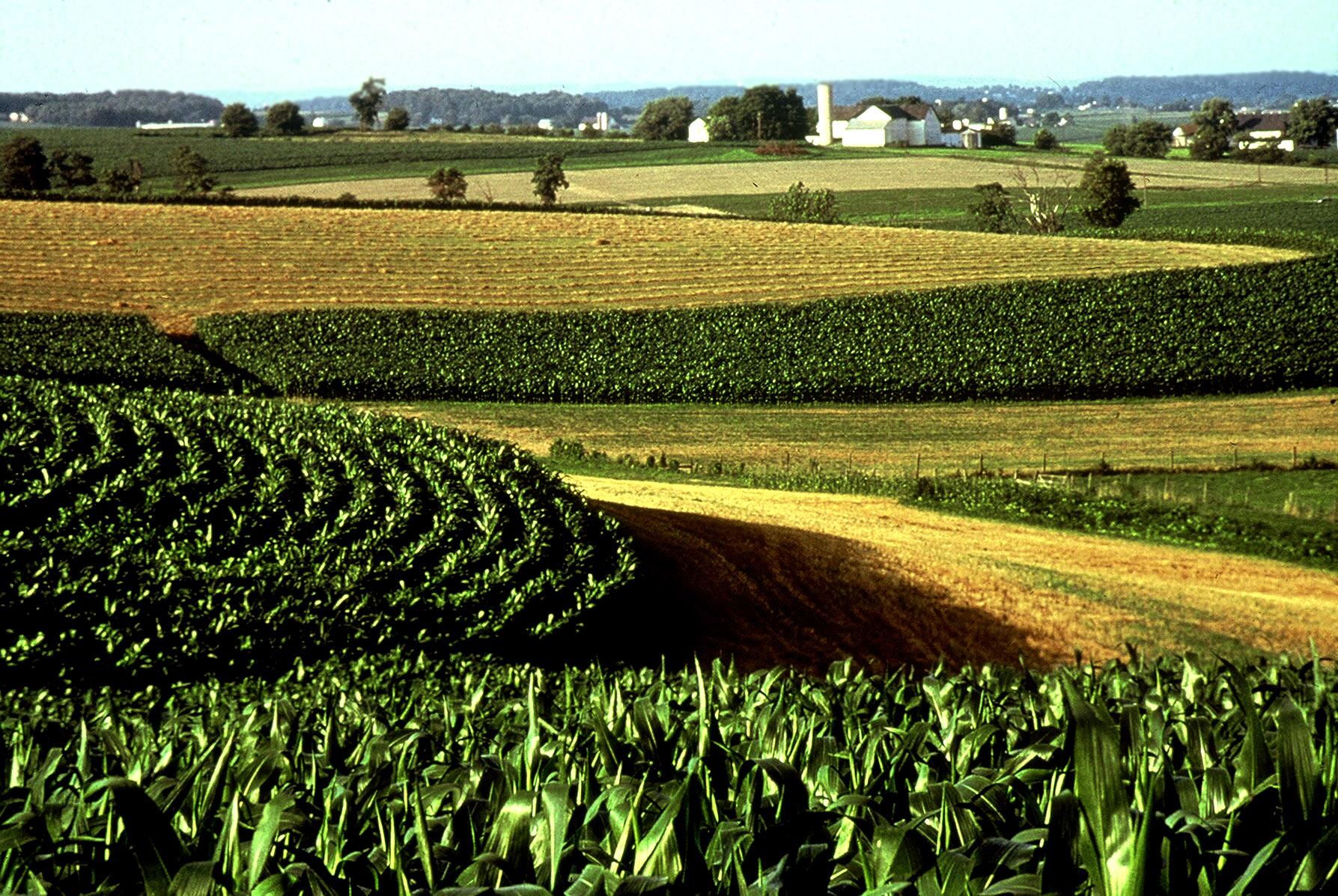 U S Soil Announces A New Planters Ii Foundation Minerals