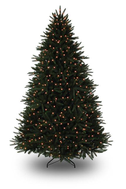 Trees Christmas Lit Quality Pre