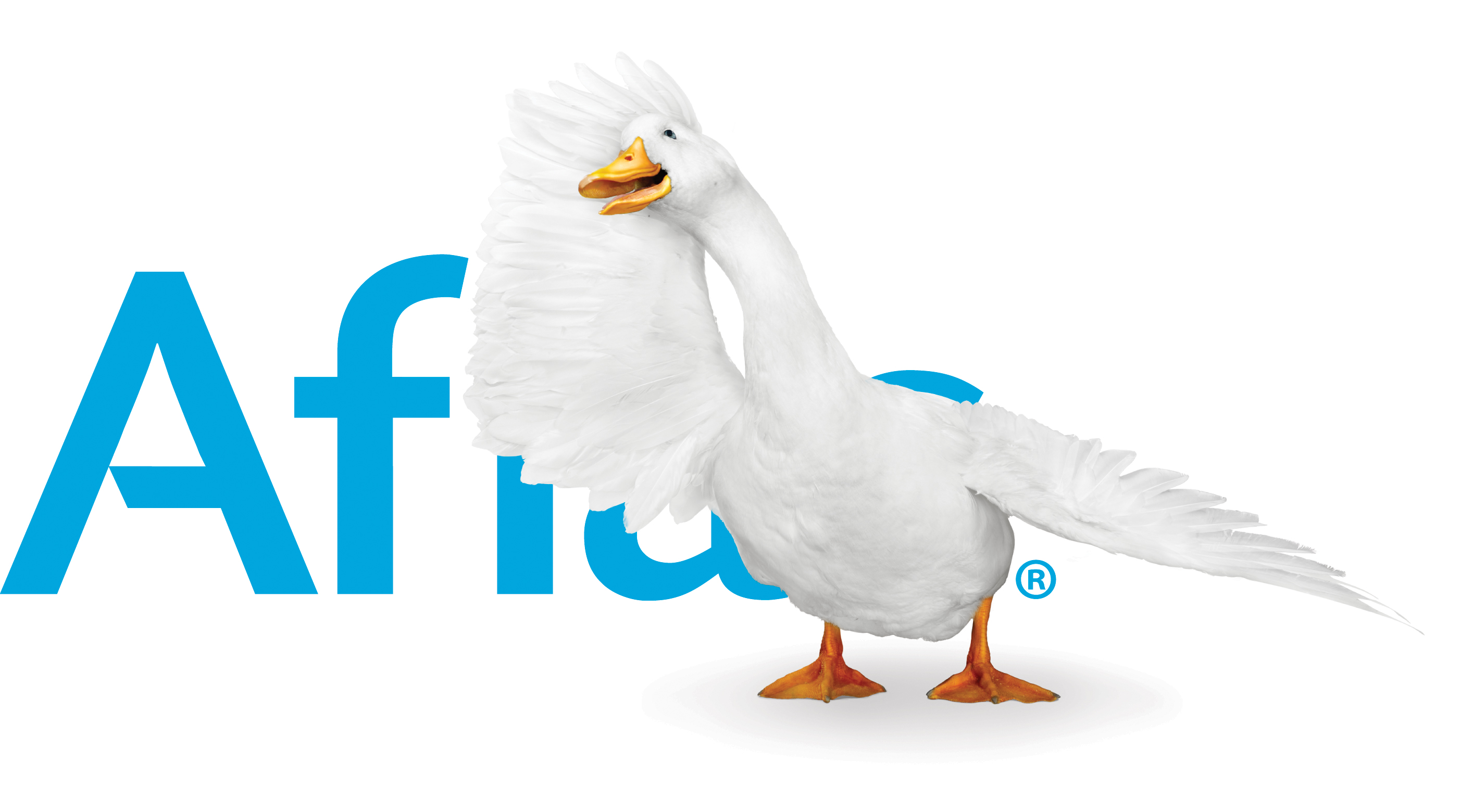Robert Louey Design Pagenova Grooms Aflac Duck For 10th