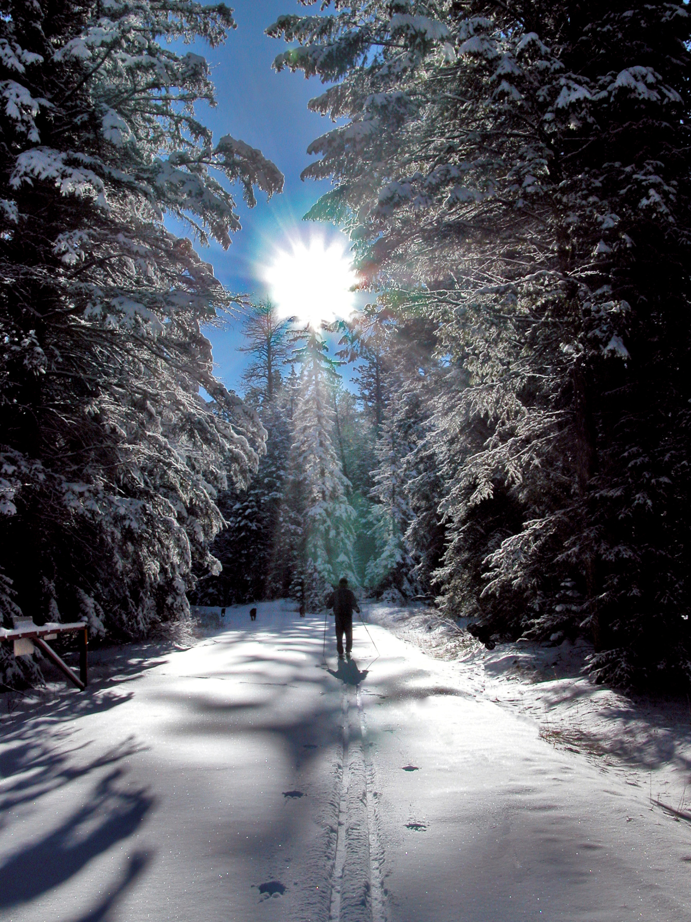 Pagosa Springs Announces Top Off Slope Winter Adventures