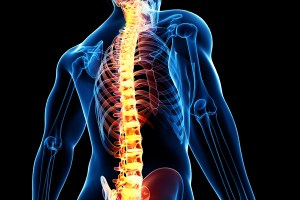 Medtronic Takes the Lead in the US Spinal Implant Market