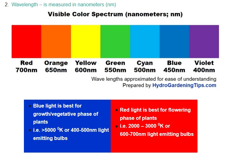 And Lights Led Blue Red Spectrum