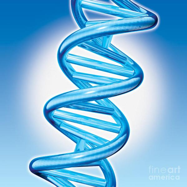 DNA Spectrum Announces a New DNA Test For Custom Genetic ...