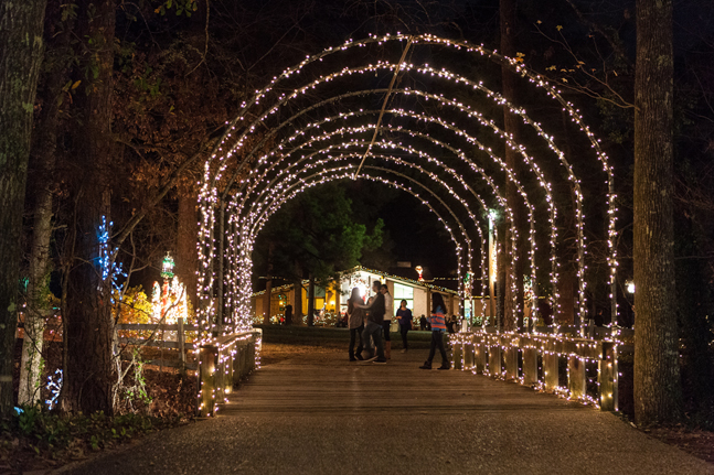 American Rose Society To Host 31st Annual Christmas In