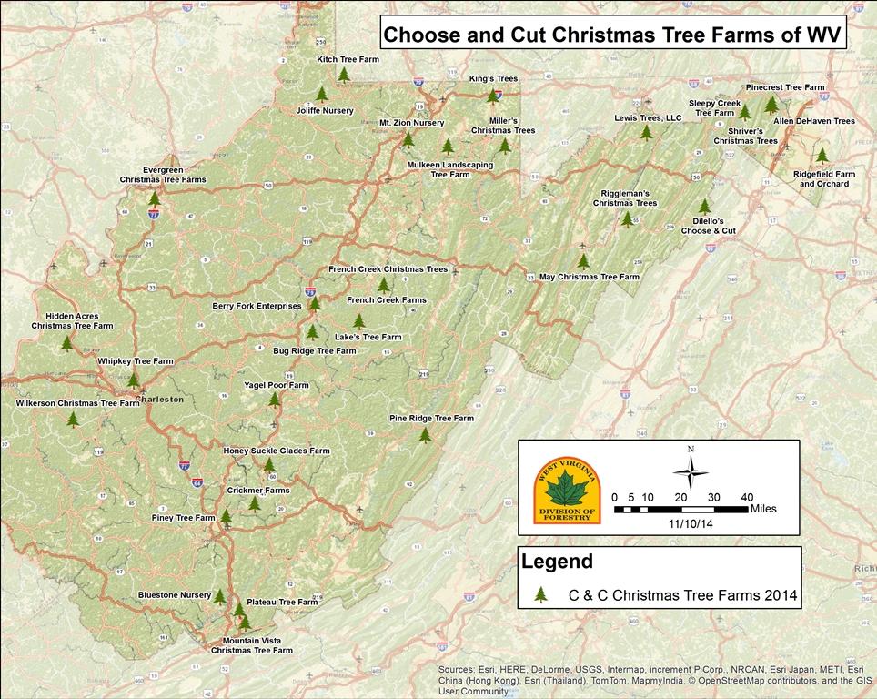 You Cut Christmas Tree Farm