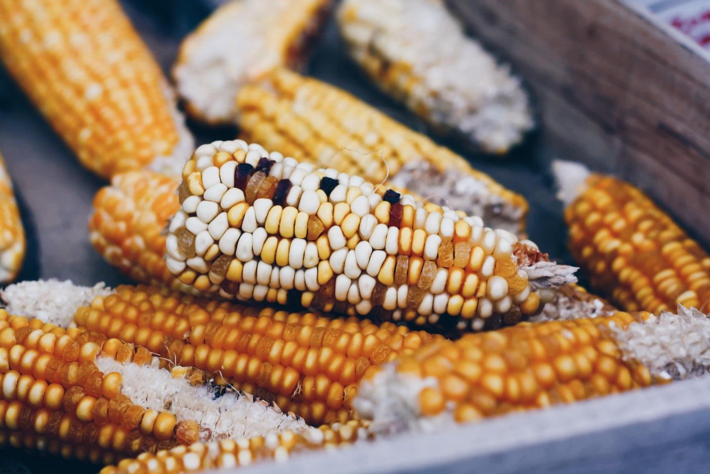 Nativeamericanjewelry Celebrates Native American Food