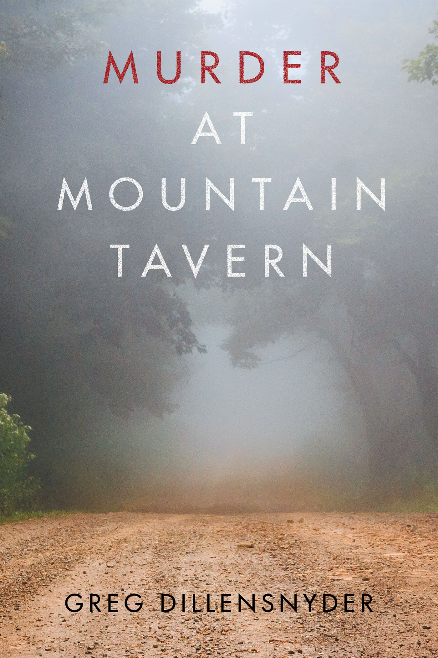 Author Greg Dillensnyders New Book Murder At Mountain