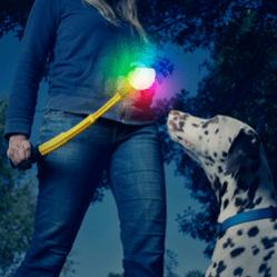 Nite Ize Huck 'N Tuck GlowStreak Collapsible Thrower + LED Ball