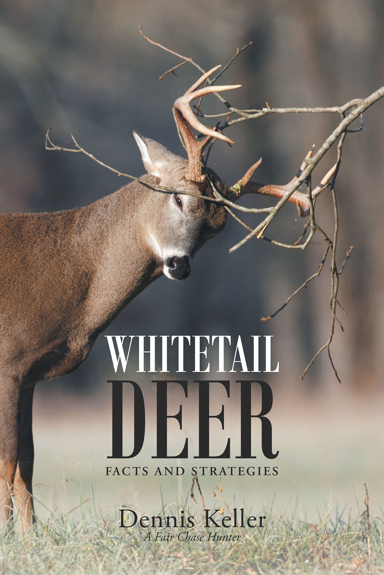 Author Dennis Keller S New Book Whitetail Deer Facts And
