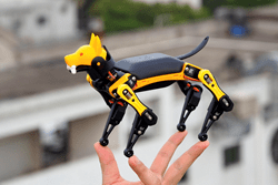 Petoi Bittle, the World's First Palm-sized, Trick Playing Open-source Robot Dog