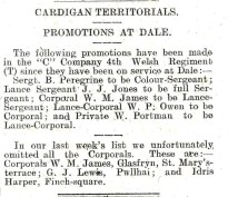 1914 WW1 week 6.2 Cardigan Territorials promotions