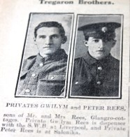 Tregaron brothers resized