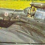 Dive bombers of IIIrd Gruppe of Sturzkampfgeschwader 1