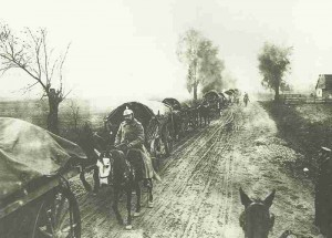 Transport column of German Ninth Army