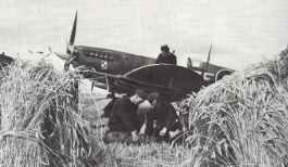 Sptfire IX, Polish No.308 RAF sqaudron