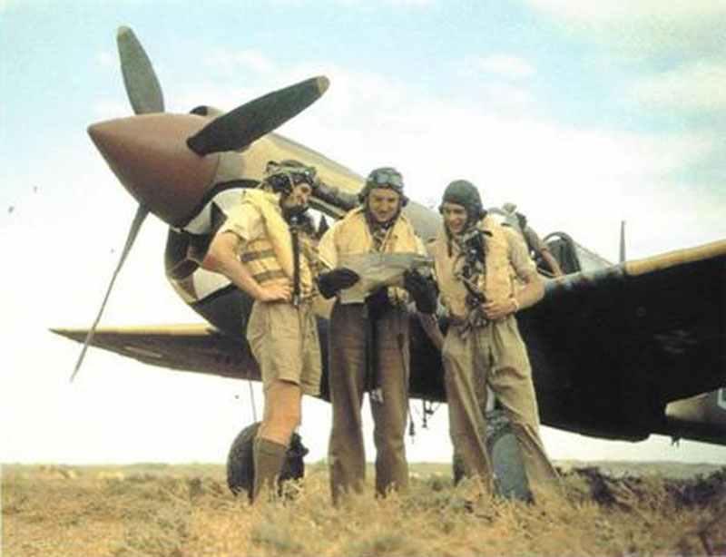 RAF Warhawk pilots