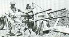 British soldier examines a captured Flakvierling