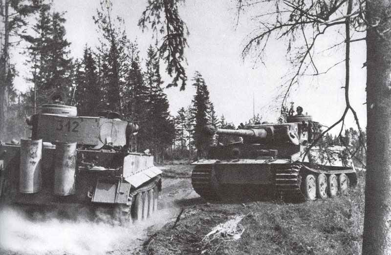 In the forests of the middle eastern front meet two German Tiger tanks.