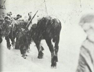 US troops in Winter War