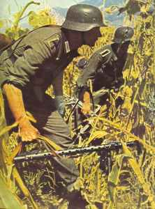 German infantry advance through a Russian corn field