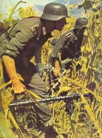 German infantry advance through a Russian corn field