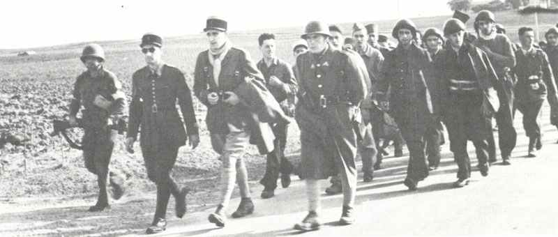 captured Vichy French soldiers