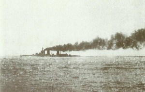 Lion at Jutland