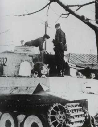 first Tiger tanks for SS div