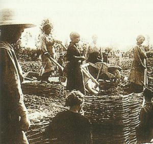 Women in the construction of a trench