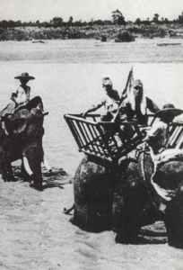 Japanese troops on elephants