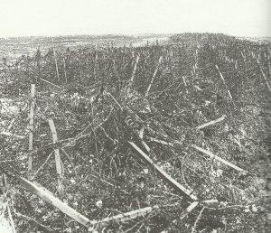 ection of the German Hindenburg Line