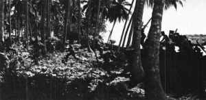 US Marines landing on Guadalcanal