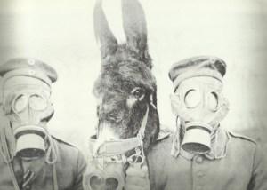 Gasmask for men and donkey