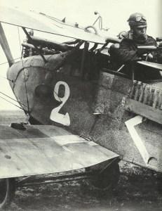 rear gunner of a Halberstadt CLII ground-attacker