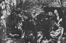 Indian artillery gunners Arakan mountains