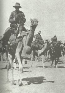 Australian and NZ troops of the Desert Mounted Corps