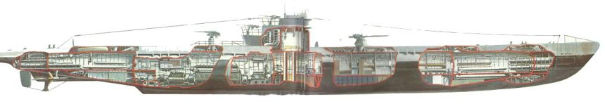 Profile of Type IXB