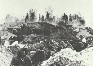 German defensive position against the Russian Narwa bridgehead.